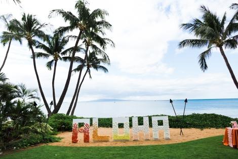 N V Maui Media-186