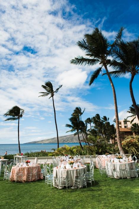 N V Maui Media-253