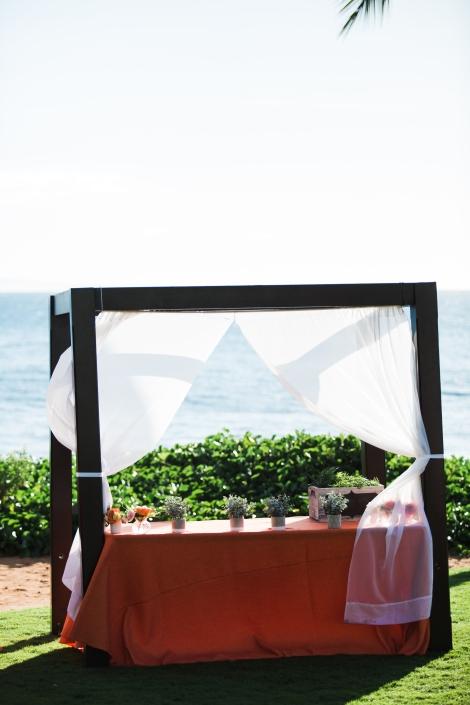 N V Maui Media-480